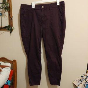 Lane Bryant Mid Rise Skinny Utility Pants